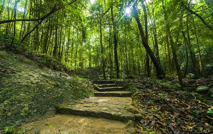 Parque Nacional Phaeng