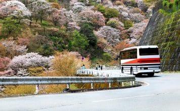Viajar en autobús en Japón
